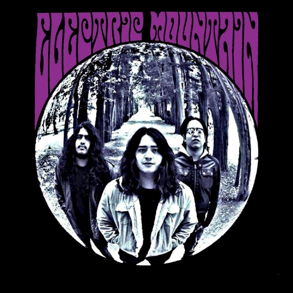 Image of ELECTRIC MOUNTAIN - ELECTRIC MOUNTAIN Ltd Trasparent Purple Vinyl