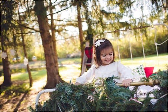 Image of 2018 Holiday mini sessions