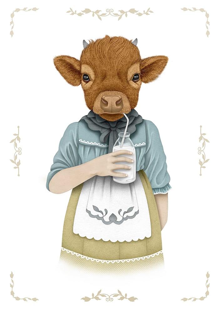 Image of Vaquita