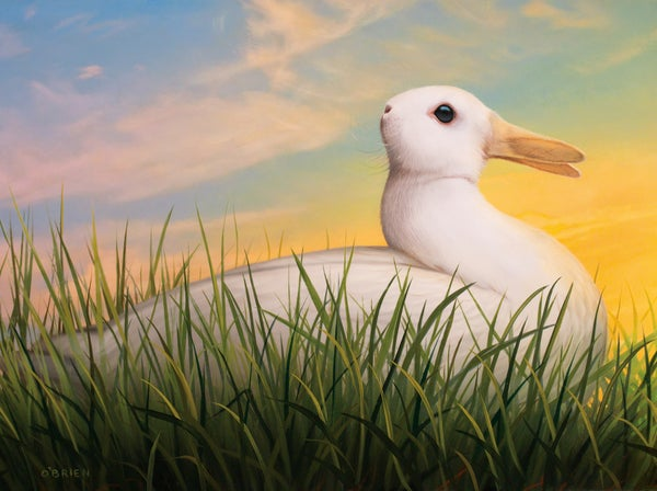 "Image of 'Rabbit Duck' ""14"" X ""11"" archival print"