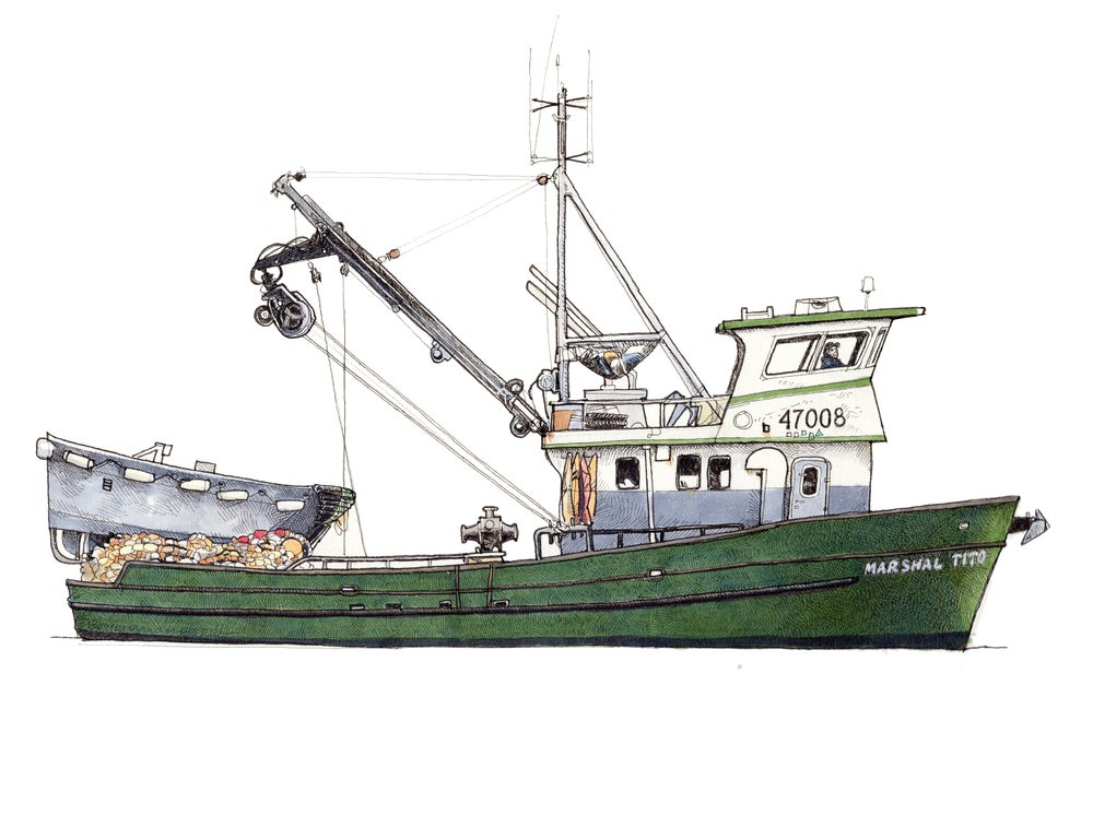 Image of F/V Marshal Tito