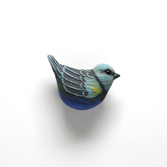 Image of Blue Necked Tanager