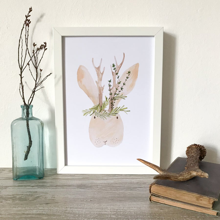 Image of MR JACKALOPE A4 PRINT