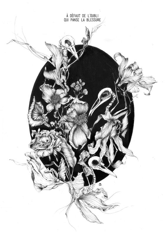 Image of Oubliées  // S I B Y L L E ◈ Tirage d'art