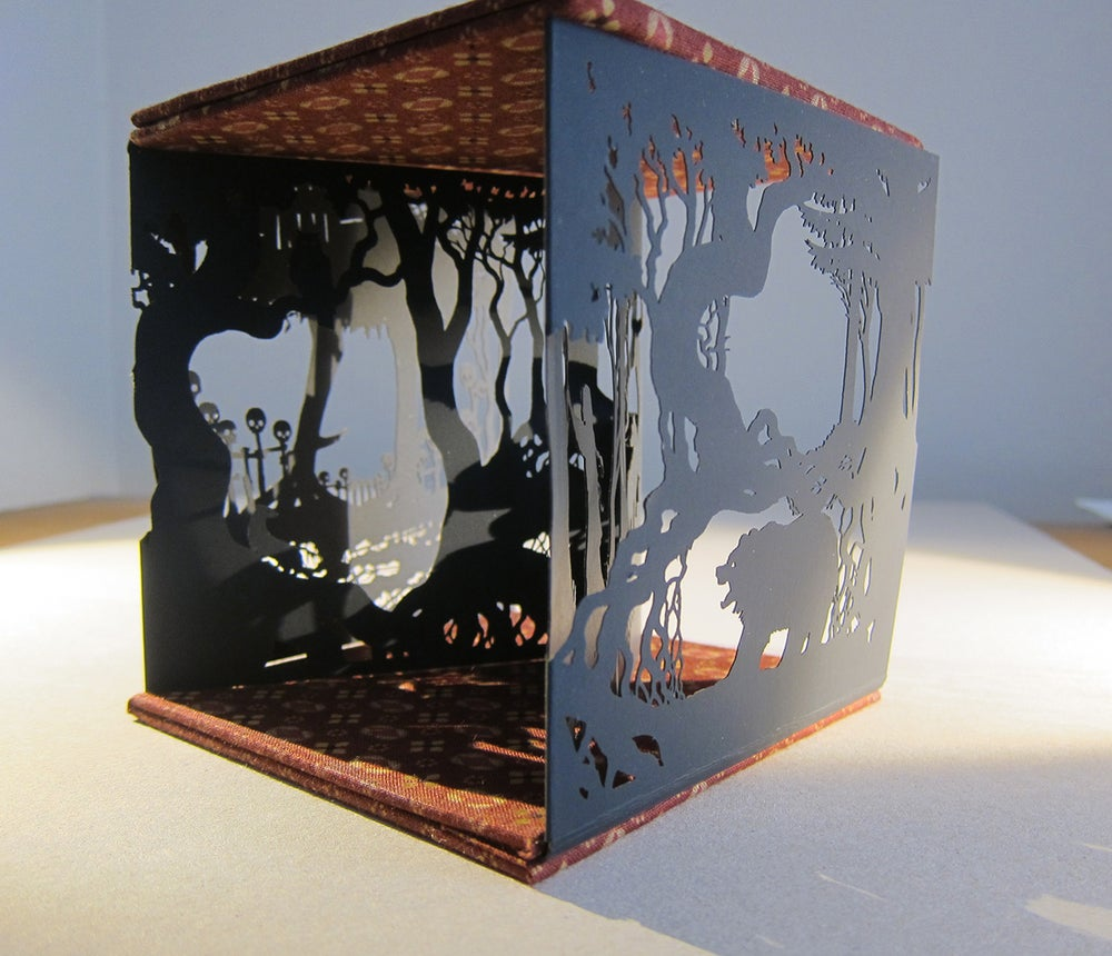 Image of Vasilisa and the Witch's Fire (limited edition)