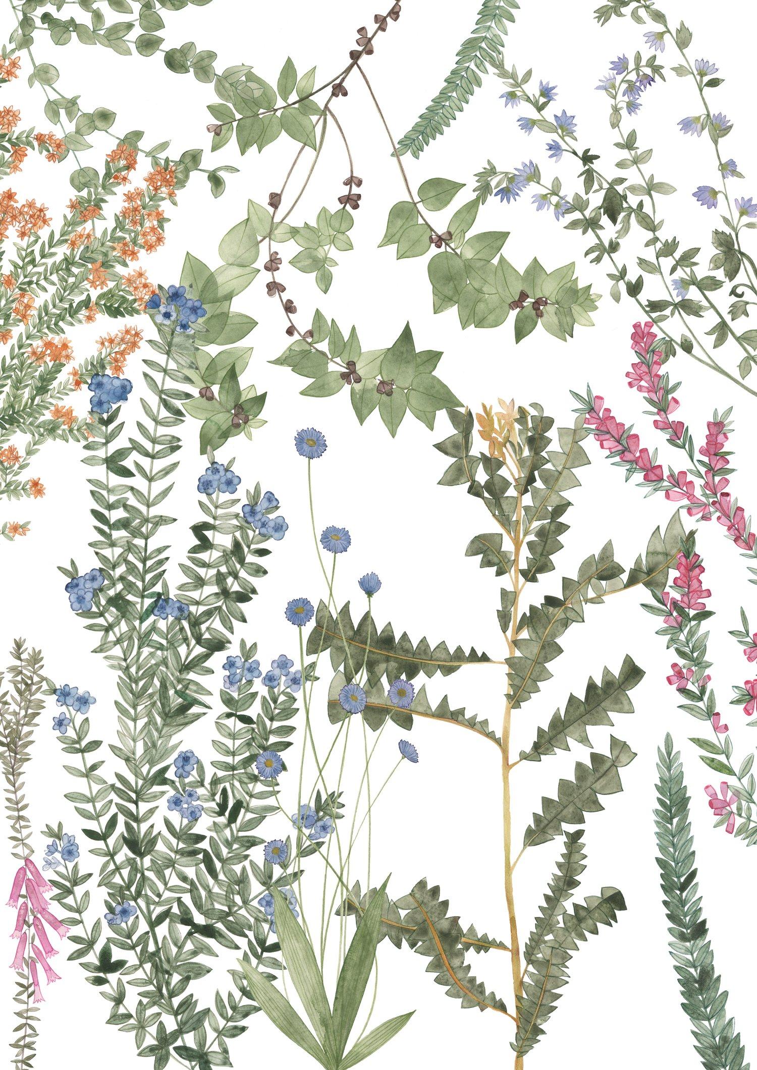 Image of Wildflowers Fine Art Print