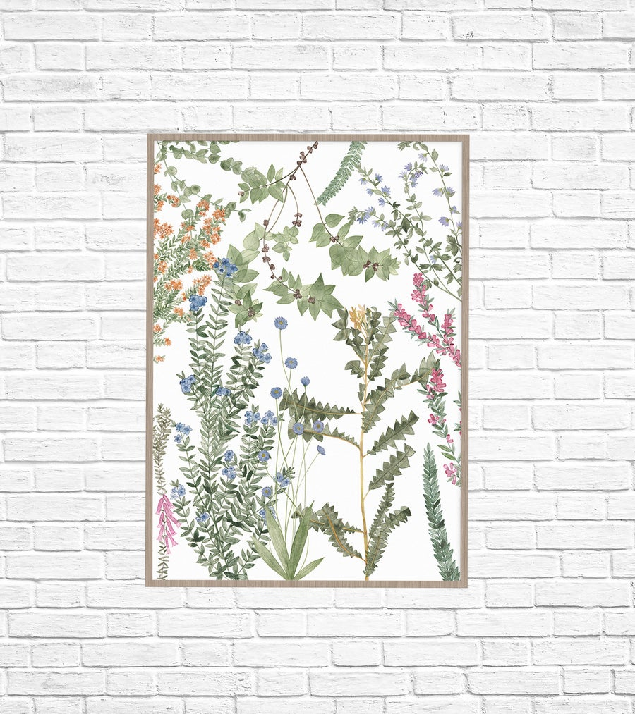 Image of Wildflowers Fine Art Print