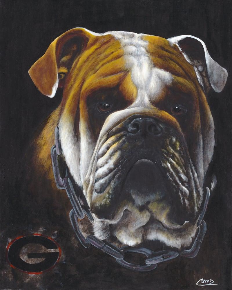 Image of Georgia Bulldog