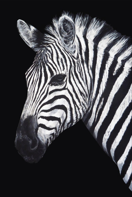 Image of Dave the Zebra paper edition