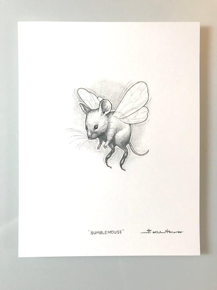 Image of Bumblemouse