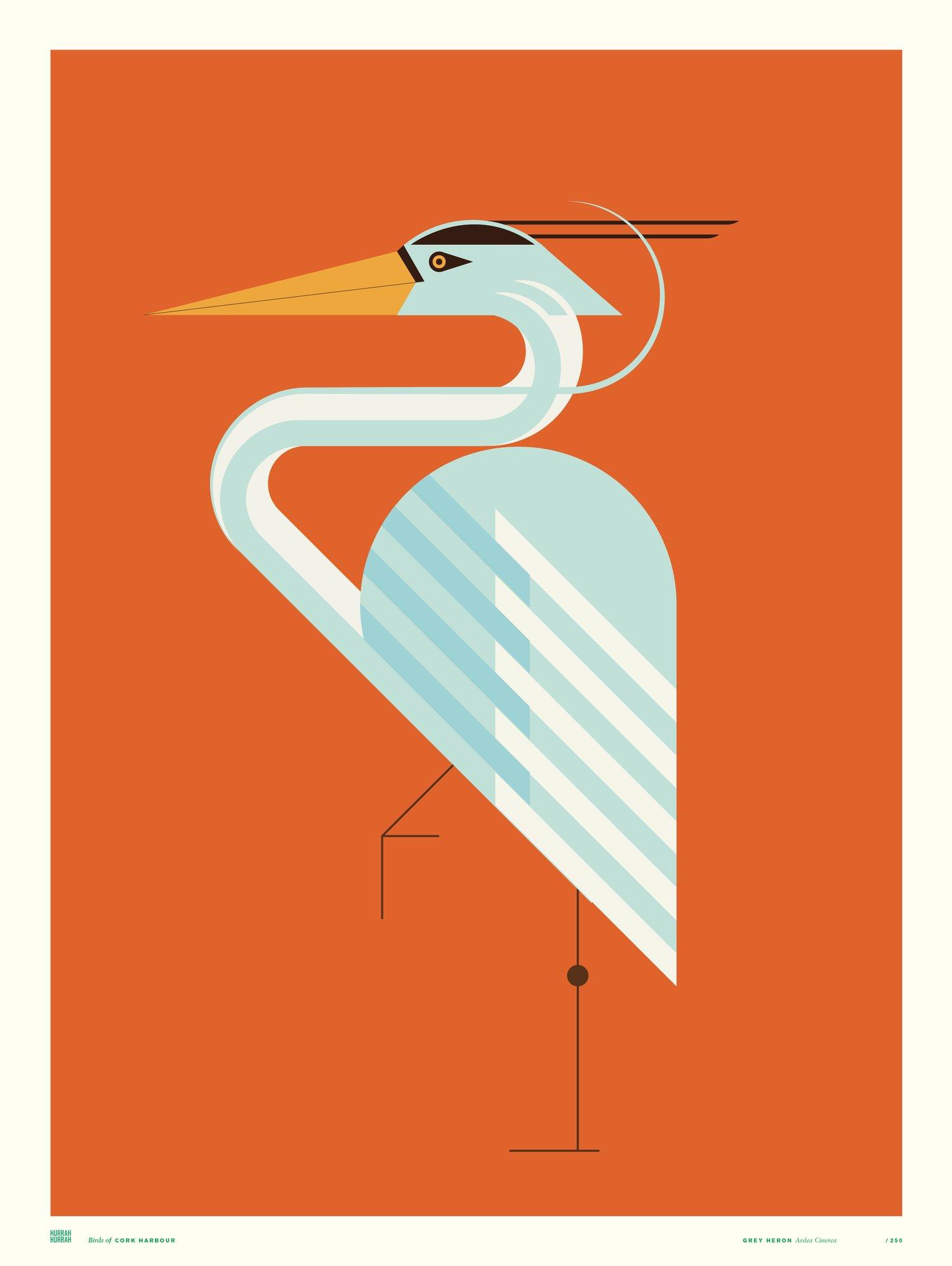 Grey Heron / Cork Harbour Bird Series