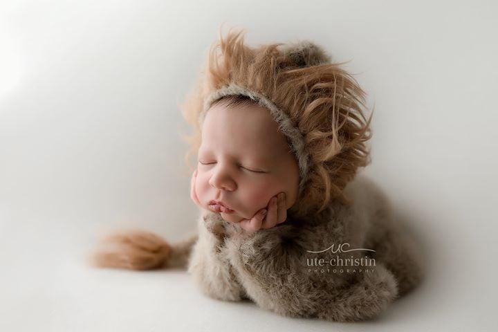 Image of Furry Little Lion Cub