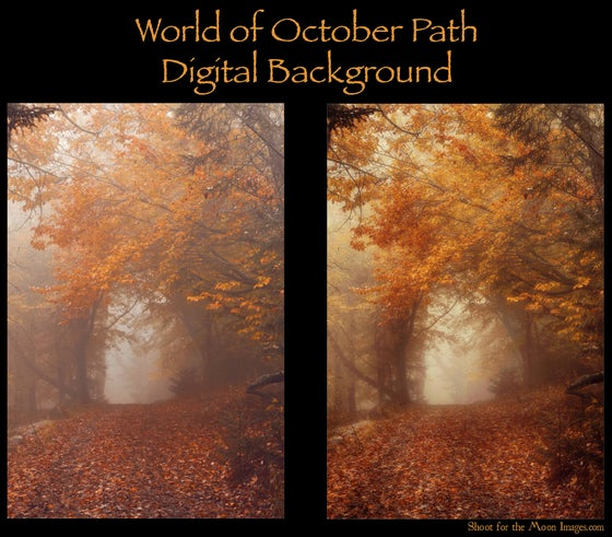 Image of World of October Path Digital Background