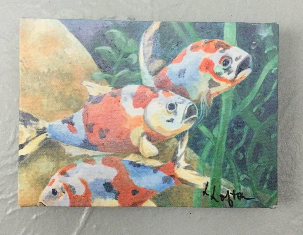 "Image of LL008  5X7 Reprint of ""KOI"""