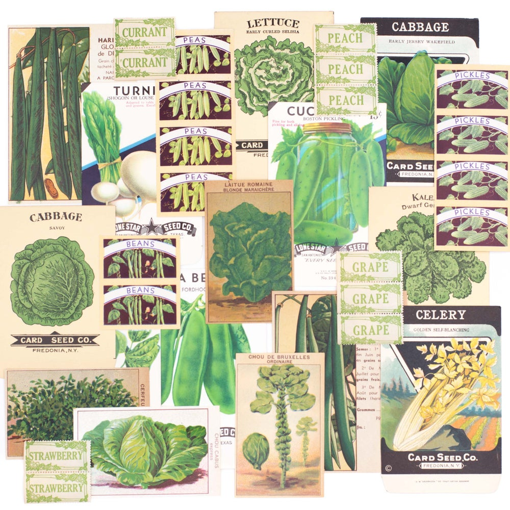 Image of Green Fruit and Vegetable Ephemera Collection