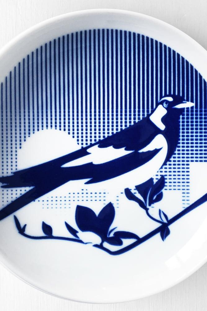 Image of Piping Shrike