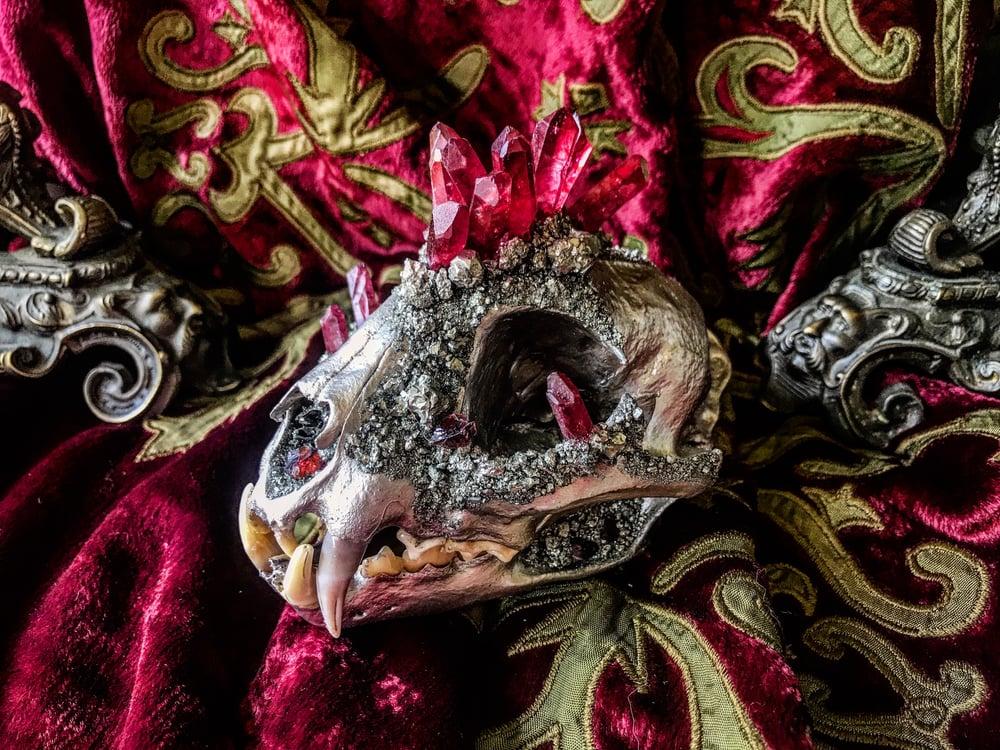 Image of Red Titanium Quartz - Bobcat Skull