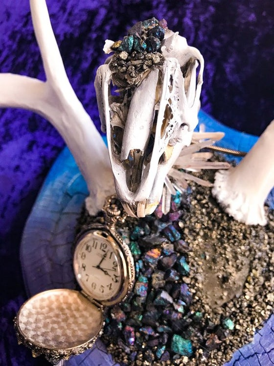 Image of White Rabbit Chalcopyrite & Quartz Dear Antler Rabbit Skull - Jewelry Display