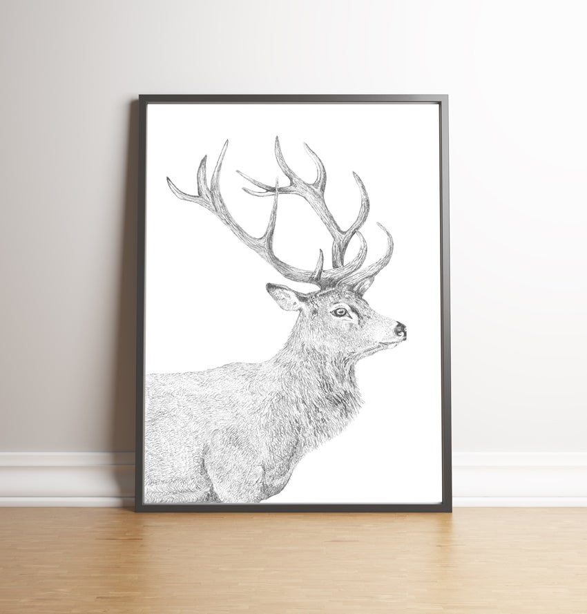Image of THE STAG - limited edition signed print and free greetings card!