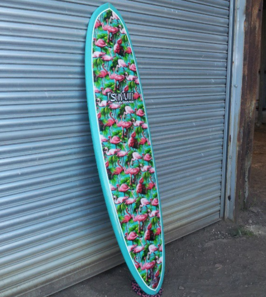 Image of Custom fish and retro boards