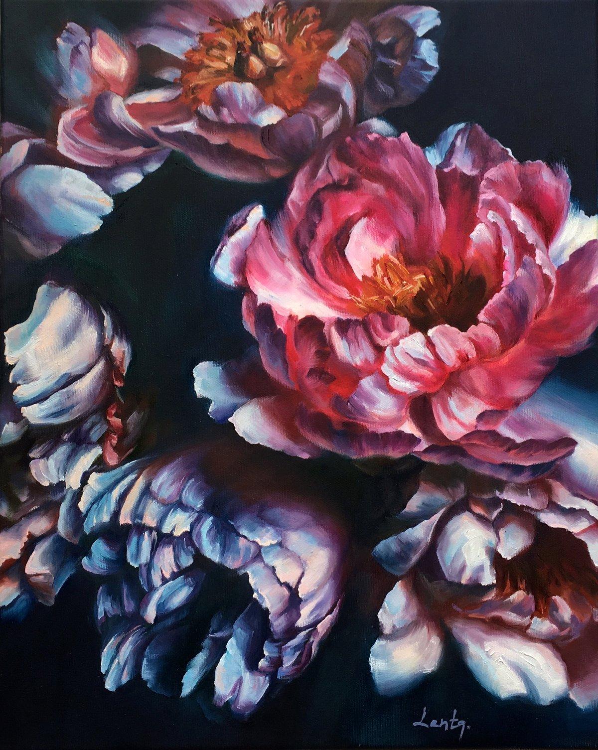Image of Peony Flowers