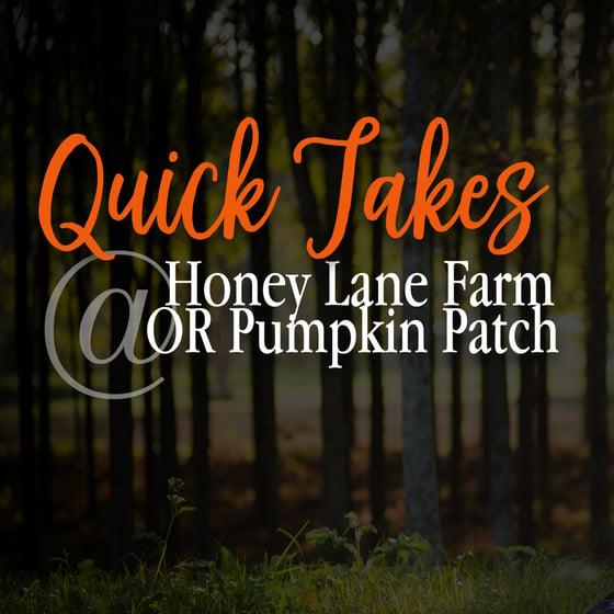 Image of Quick Takes @ Pumpkin Patch/HoneyLane Farm
