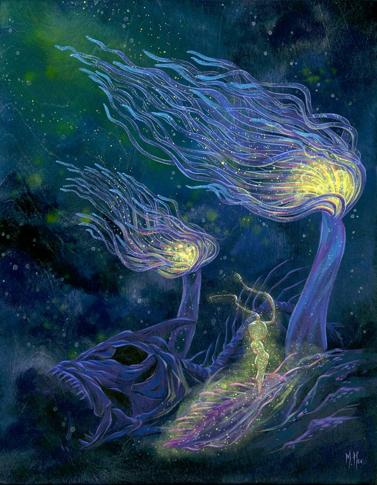Image of Dreams - Ascendance