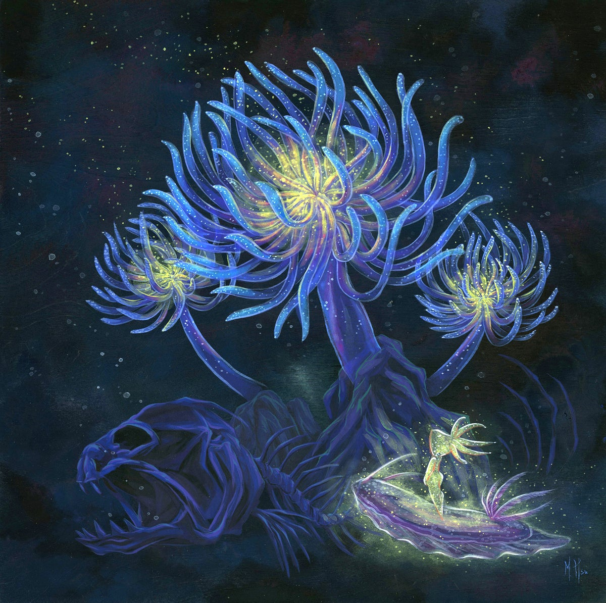 Dreams - Transcendence