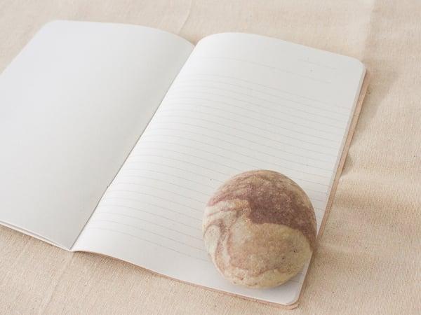 Everyday Garden Journal - gardening notebook for daily garden notes #1 salgueiro - arminho
