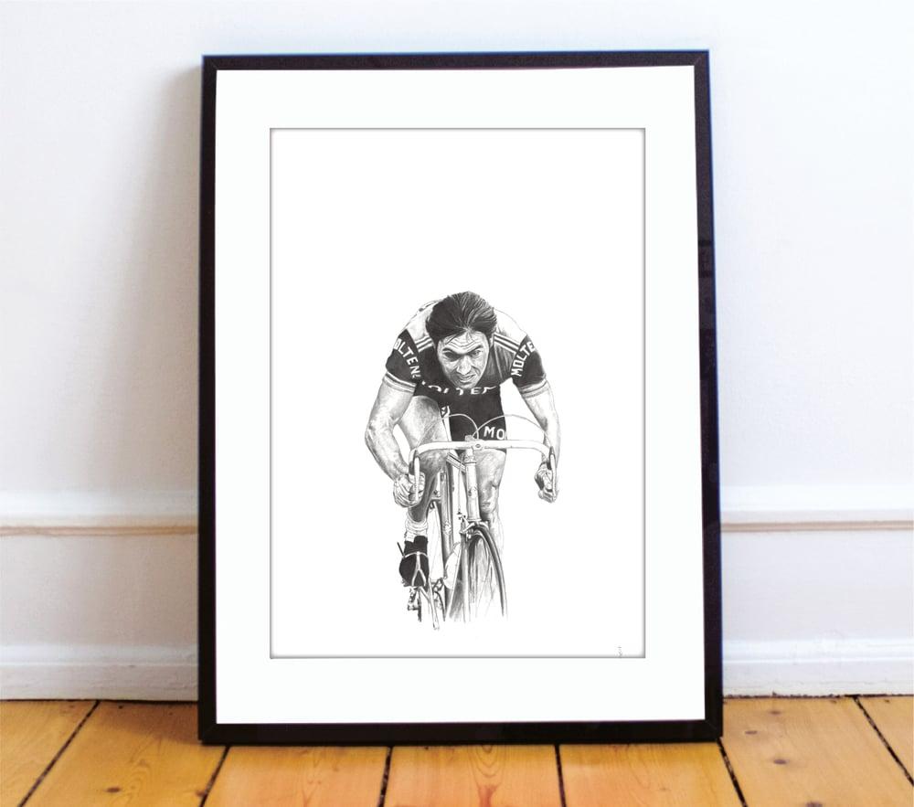 Image of Eddy Merckx A4 print - by Gemma Jones