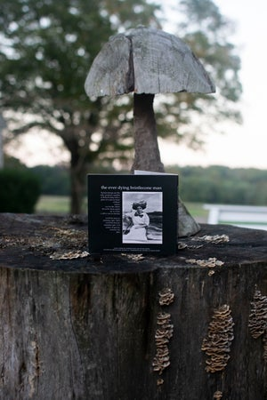 Image of The Ever Dying Bristlecone Man CD