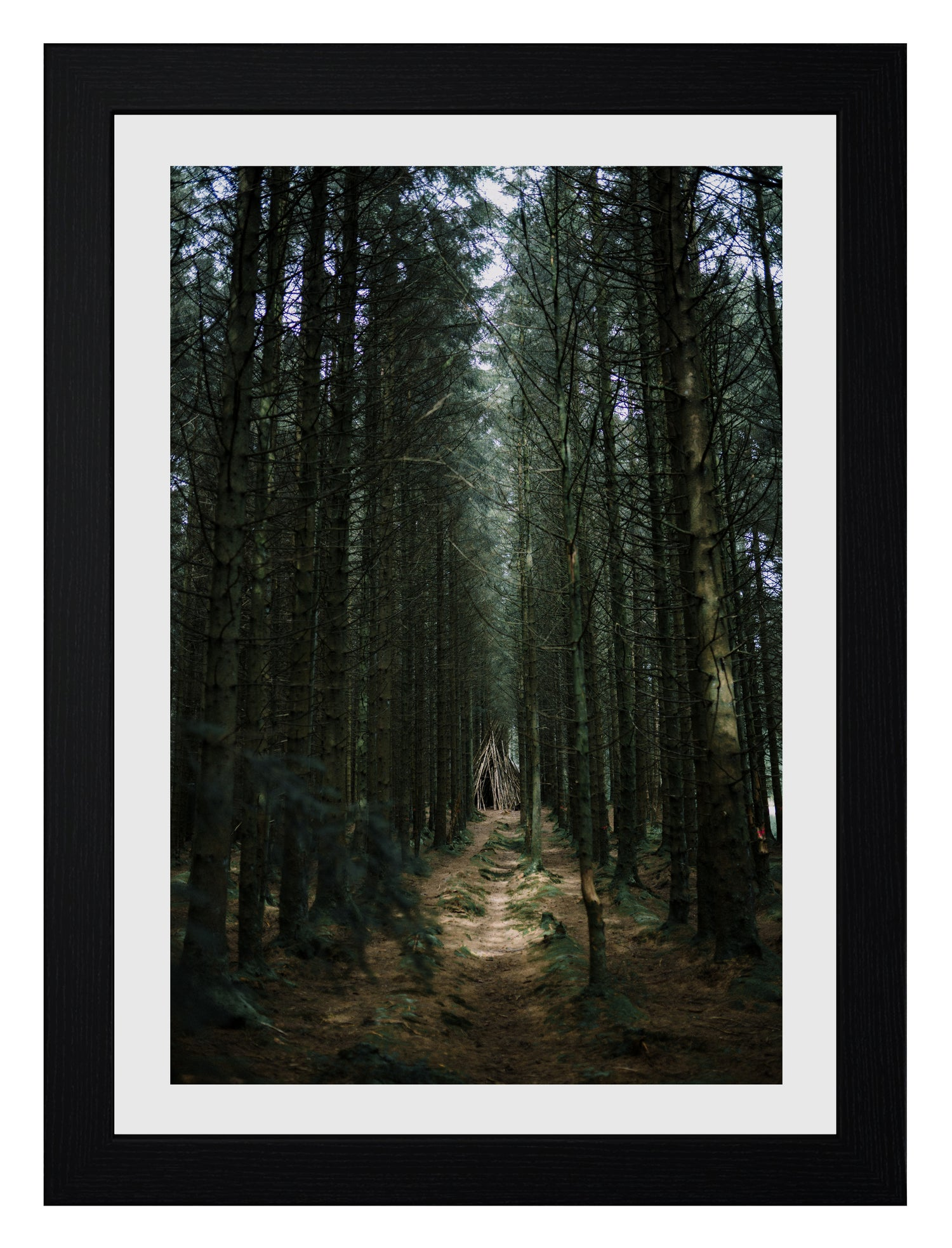 Image of 'BLAIR WITCH' PRINT