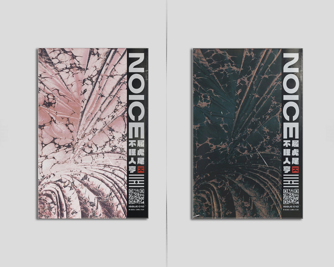 Image of Issue .010 (SECOND PRESSING)