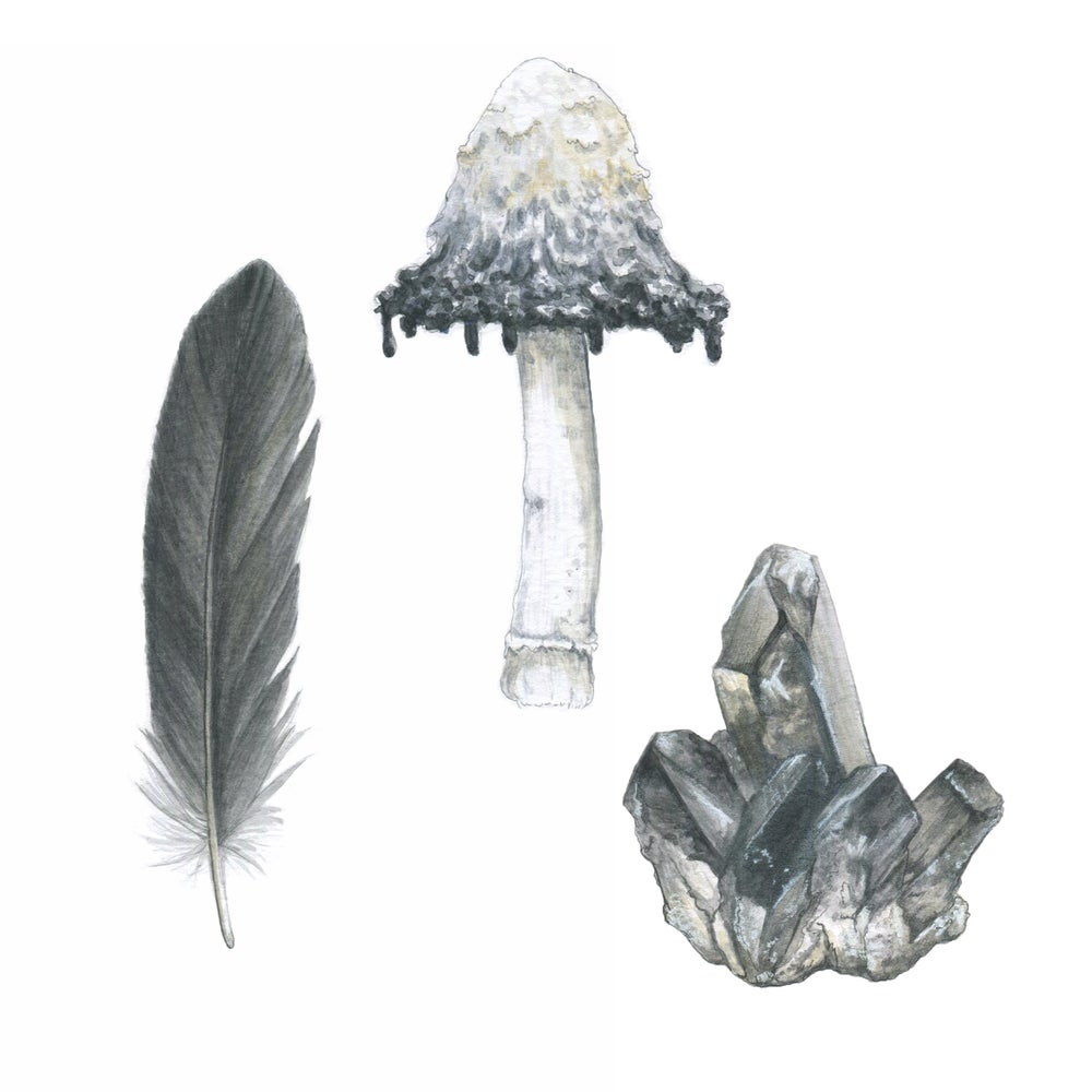 Image of Witch Tools Print Pack
