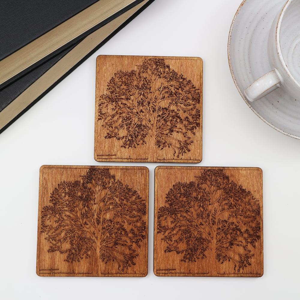 Image of Tree Coasters