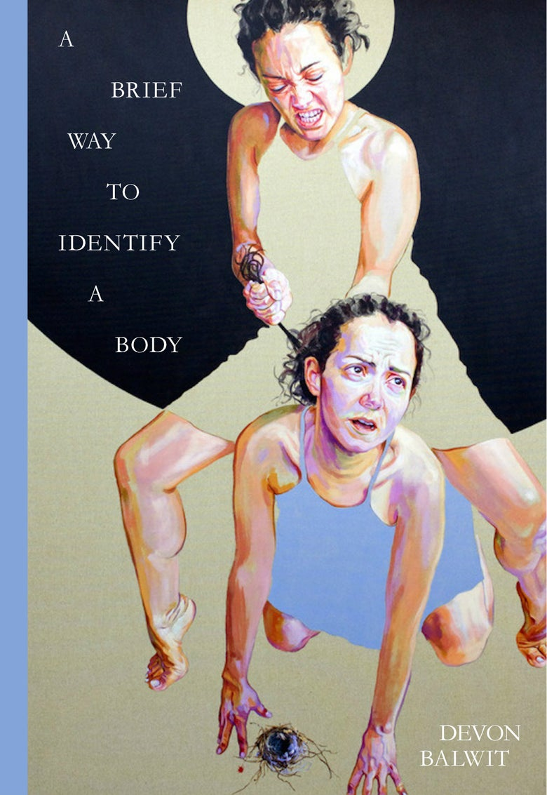 Image of A Brief Way to Identify a Body by Devon Balwit