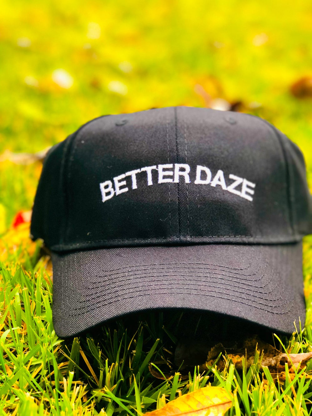 Image of Better Daze Dad Hat