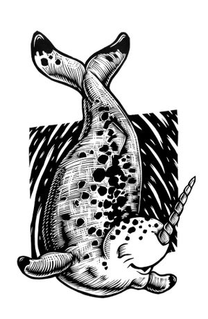 Image of Narwhal T-shirt **FREE SHIPPING**