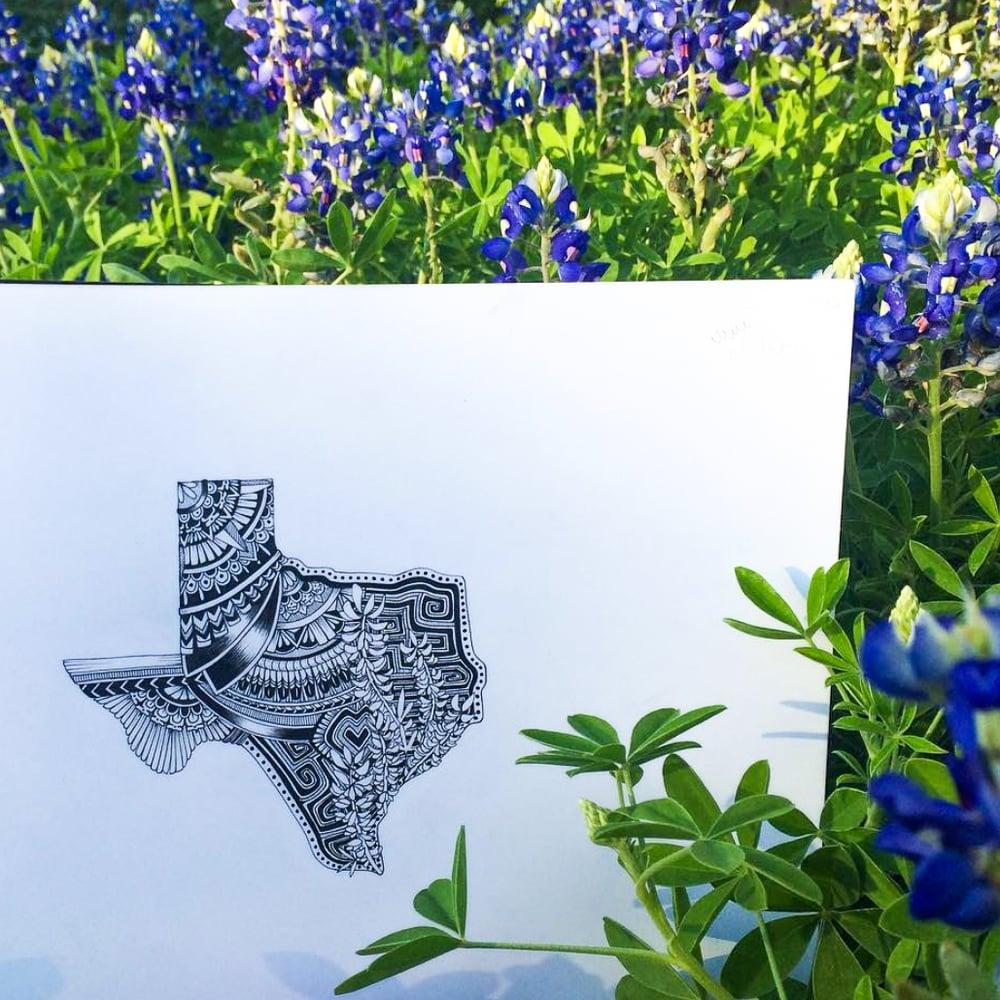 Image of Austin Skyline/Texas