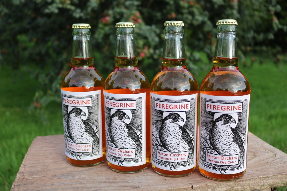 Image of PEREGRINE    Falcon Orchard (Single Variety)  Medium Dry Cider 4 bottles  Naturally Fermented