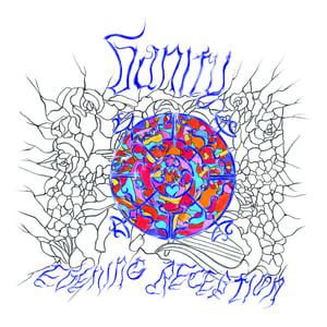 Image of VANITY - EVENING RECEPTION LP