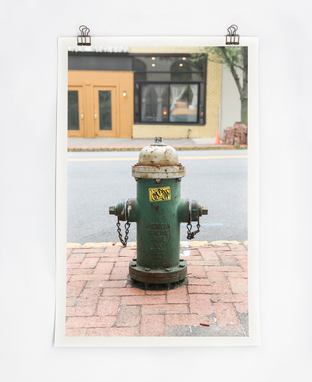 Image of Green Hydrant