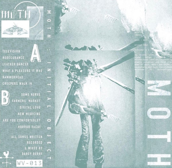 Image of Moth - Initial Object