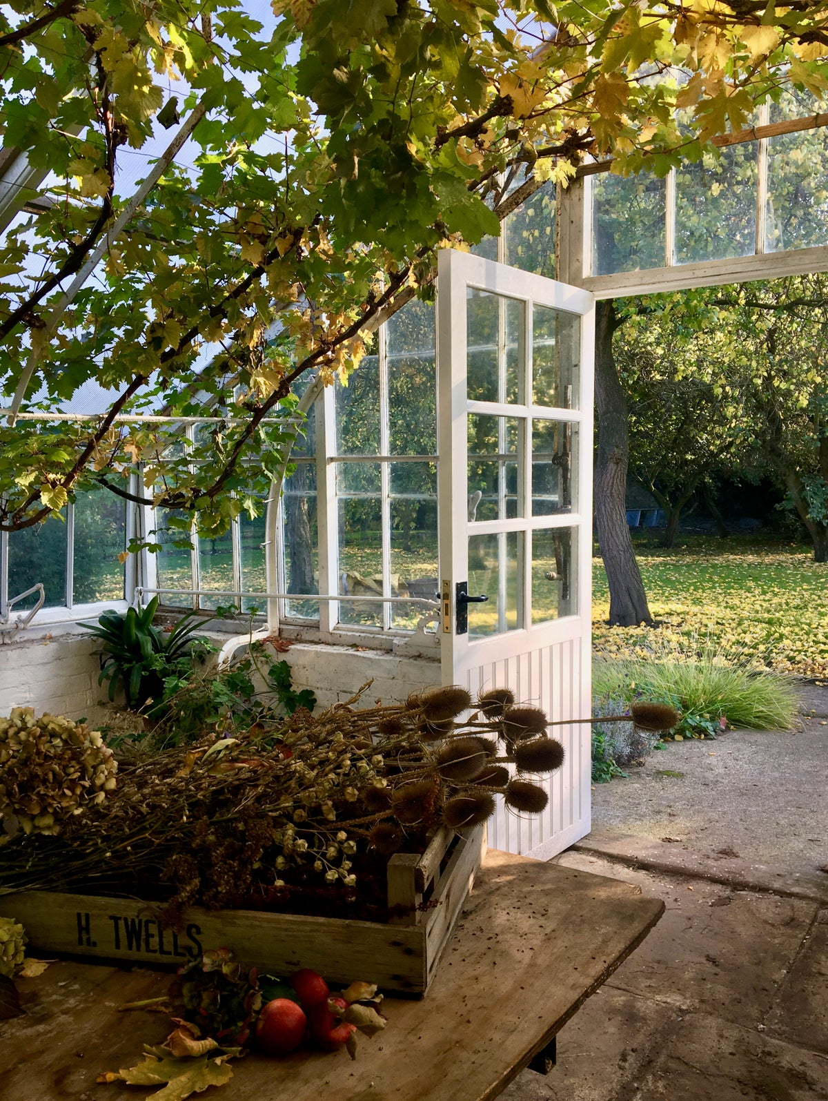 Image of Autumn Cutting Garden Workshop