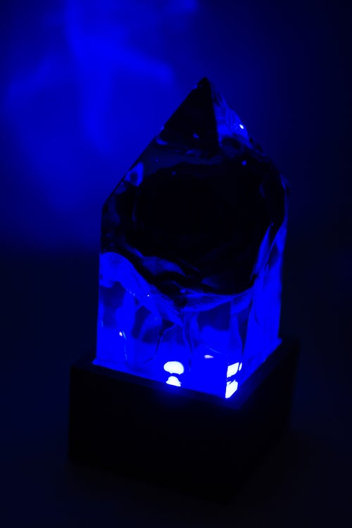 Image of Halloween Velvet Red Rose, Black Light Prism Lamp