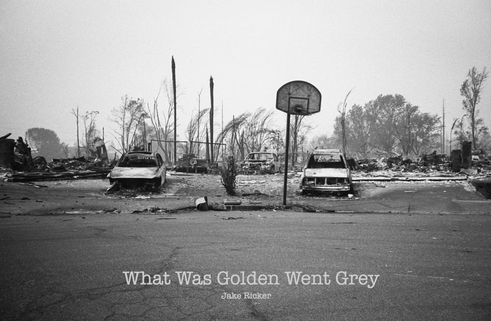 Image of What Was Golden Went Grey - Zine
