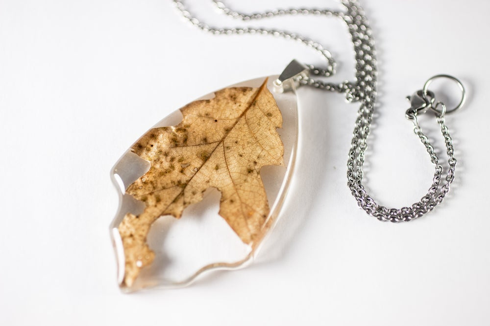 Image of Autumn Oak Leaf Medium #1