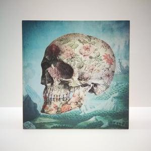 Image of Porcelain skull