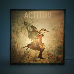 Image of Actitud