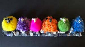 Image of My amazing Multicoloured Sheep